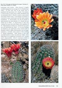 CactusWorld_2_2015_06
