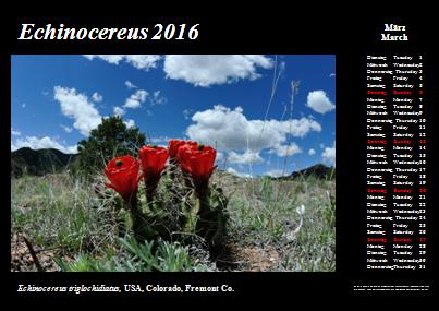 Kalender_2016_Klein_03