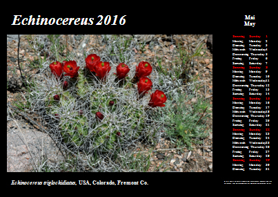 Kalender_2016_Klein_05