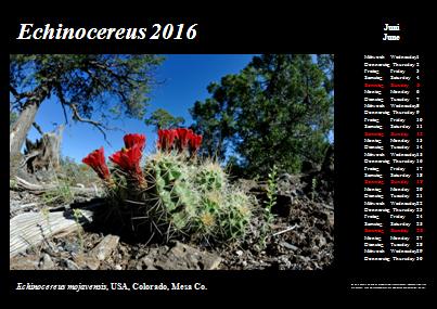 Kalender_2016_Klein_06