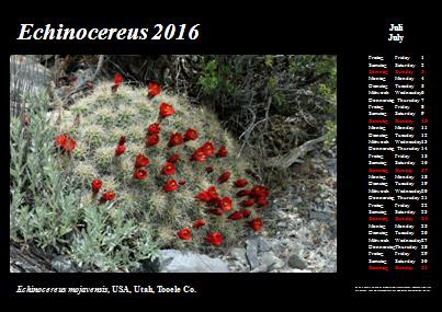 Kalender_2016_Klein_07