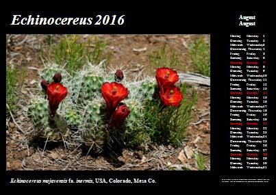 Kalender_2016_Klein_08