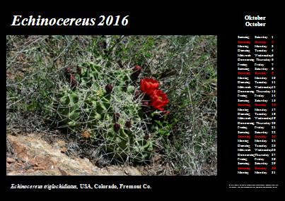 Kalender_2016_Klein_10