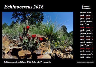 Kalender_2016_Klein_12