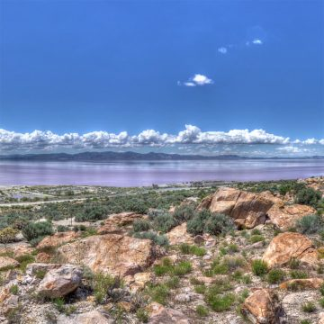 HDR Panorama mit Echinocereus mojavensis am Great Salt Lake, Utah (Video)