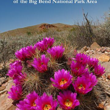 Echinocereus in Habitat: Echinocerei and other Cacti of the Big Bend National Park Area (eBook)