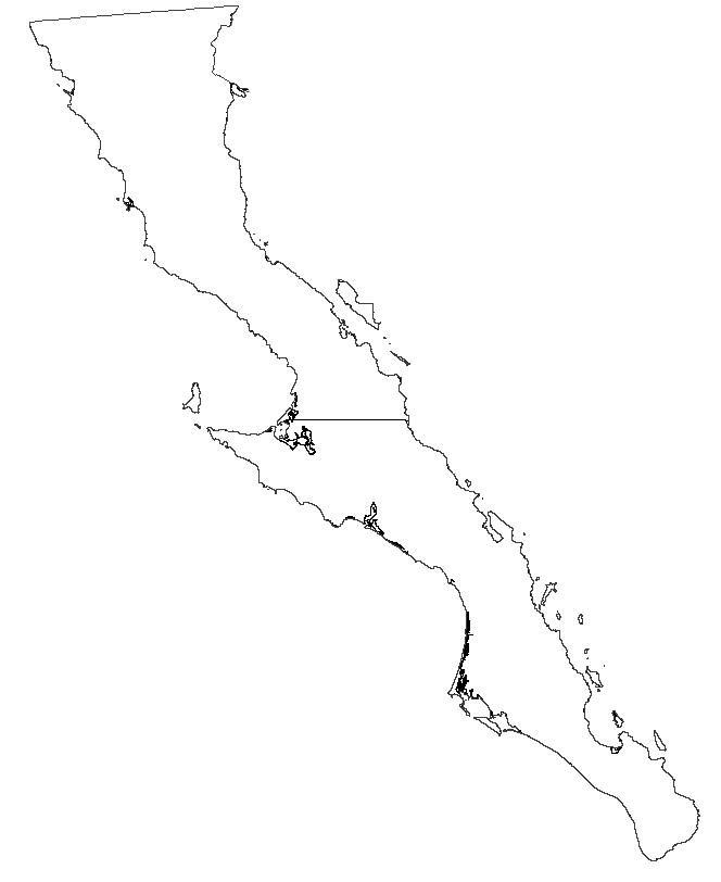 Artikel zu Baja California