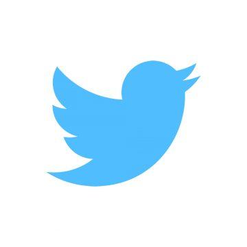 Twitter: Ausgewählte Posts von Echinocereus Online