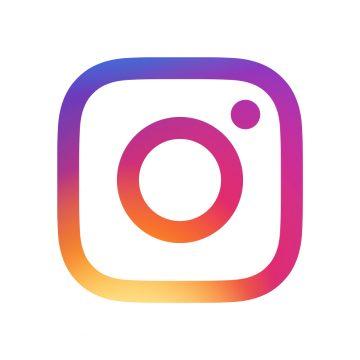 Instagram: Ausgewählte Posts von Echinocereus Online