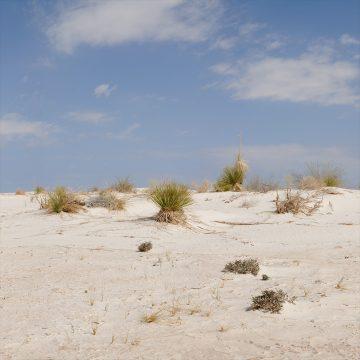 Desert View - White Sands National Park (Video)