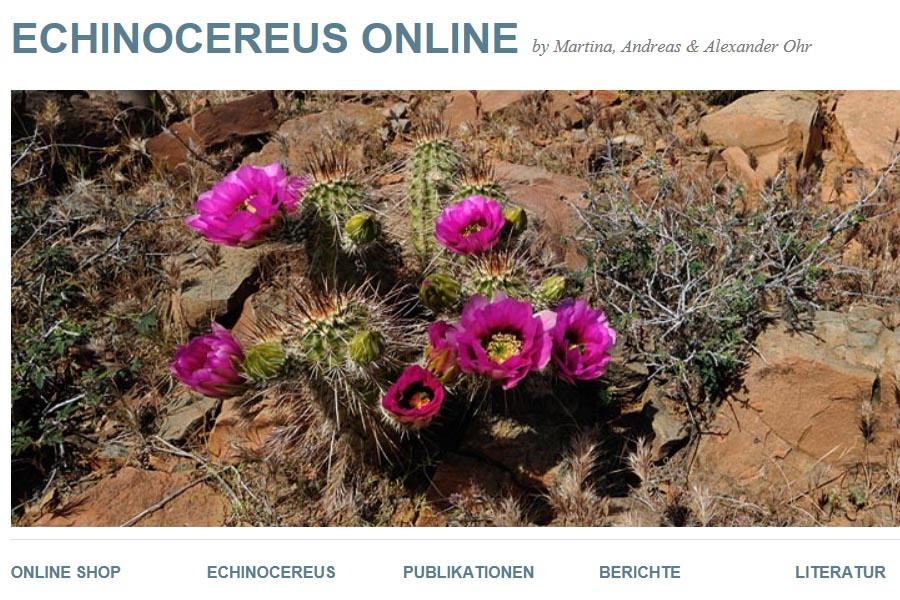 ec online 2013 02