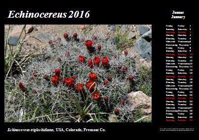 Kalender_2016_Klein_01