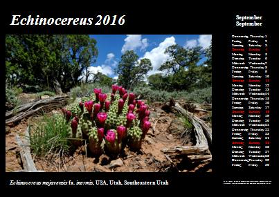 Kalender_2016_Klein_09