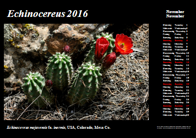 Kalender_2016_Klein_11