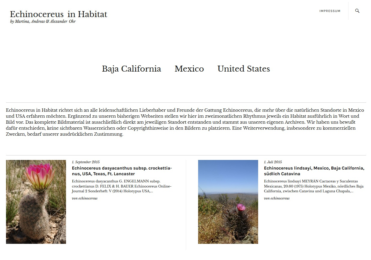 echinocereus_in_habitat