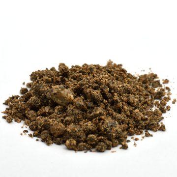 Substrat für Echinocereen