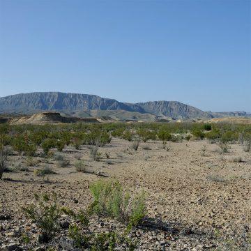 Desert View - Brewster County, Lajitas (Video)
